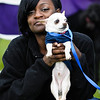 2012-20th Anniversary Bark for Life : 5 galleries with 974 photos